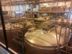 Huge vats hold the milk for processing.